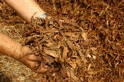 Coarse Mulch - click to enlarge